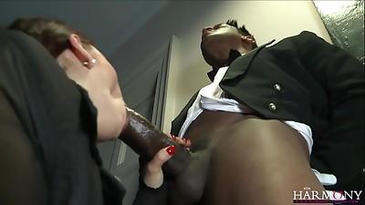Anal,Big Ass,Big Cock,Blowjob,Brunette,Cumshot,Facial,Fucking,Interracial,Lingerie